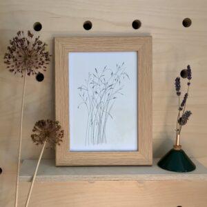 Photo of framed artwork of illustration of grasses