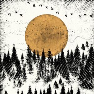 Luke Holcombe Studio Wilderness Forest View Art Prints